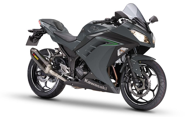 Ninja 300 Performance ABS